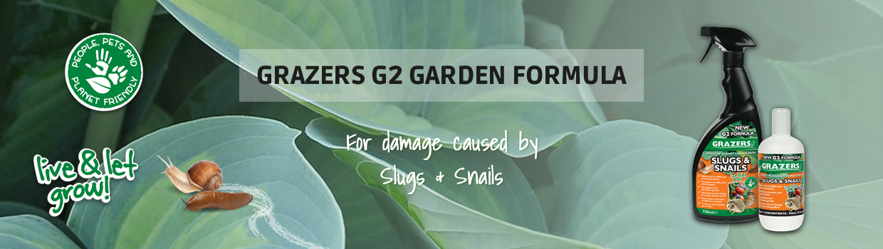 G2 : Slugs & Snails