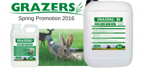 Spring Promotion 2016